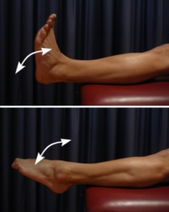 foot and ankle stretch