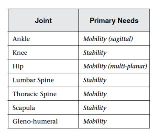 Hip mobility and low back pain